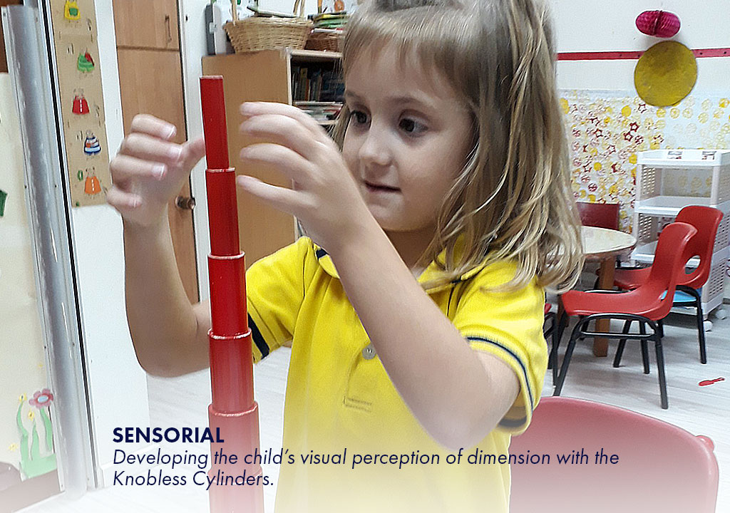 Sensorial - Developing the child's visual perception of dimension with the Knobless Cylinders.